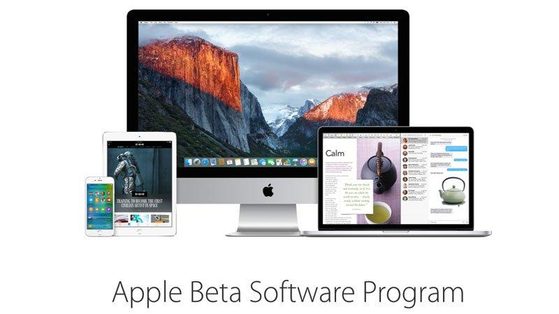 Here's the Glitch: Apple Beta Software isn'tReady